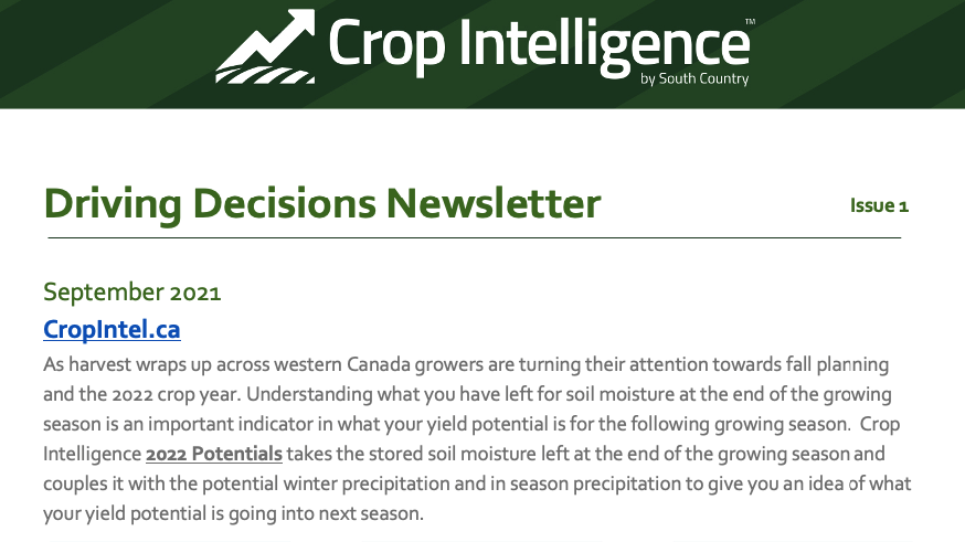 Monthly Newsletter - September 2021: Driving Decisions